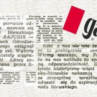 gazeta_wyborca_parodai.jpg
