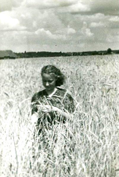 Rugių lauke. Apie 1948 m.