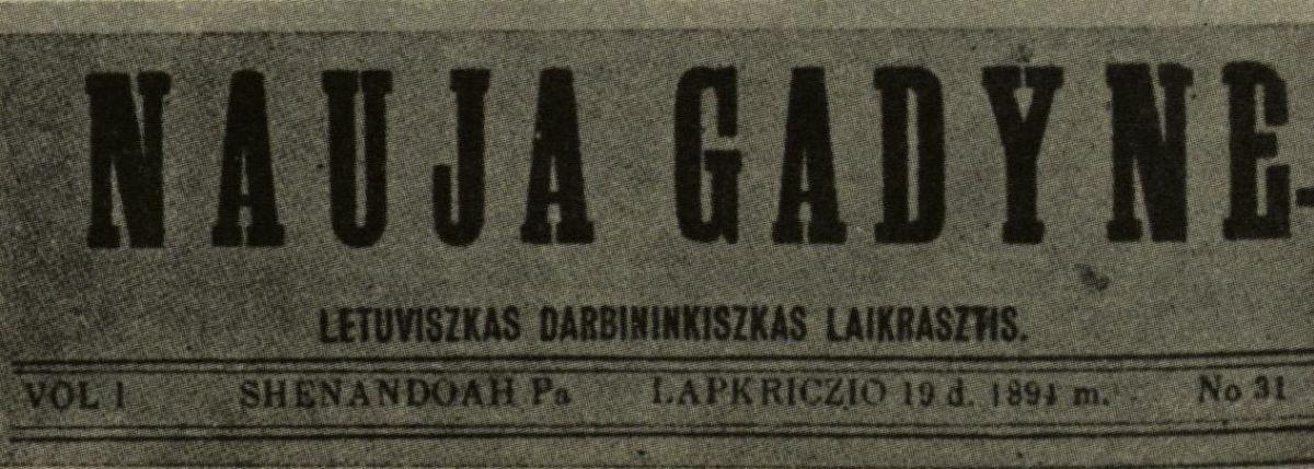 nauja_gad.jpg
