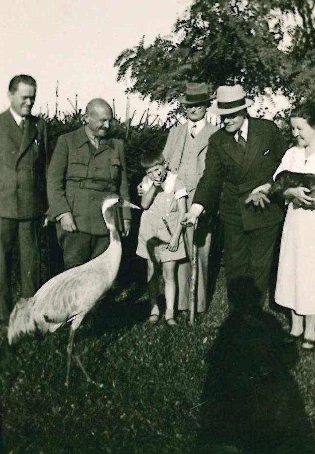 K. Grinius svečiuose pas gamtininką Tadą Ivanauską. 1934 m.