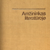 amzinink_88.JPG